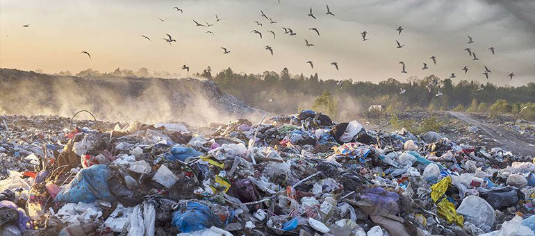What's the Problem with Plastic Waste – Biggest Threats, Trade-offs and Measures